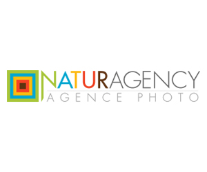 Naturagency-screenshot